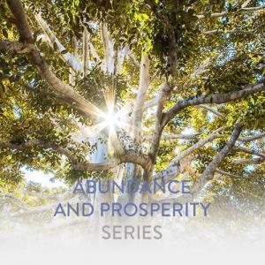 Series-Woocommerce__Abundance-and-Prosperity